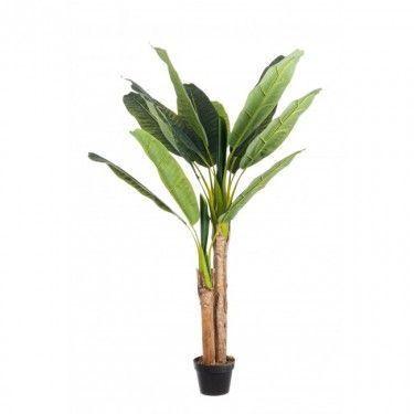 Planta banano artificial.