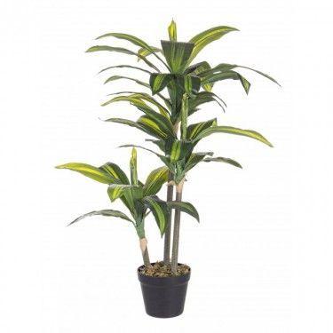 Planta artificial drácena.