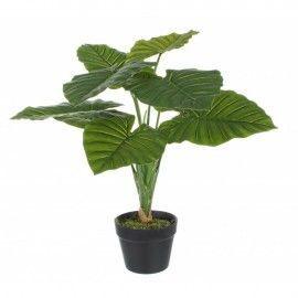 Planta diefenbachia artificial.