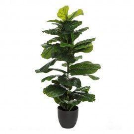 Planta ficus artificial.