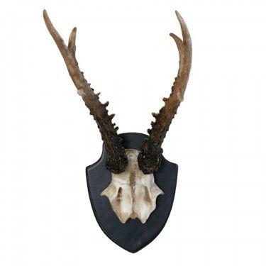 Cuernos de ciervo decorativos.