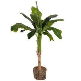 Planta banano artifical.