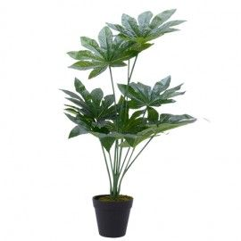 Planta artificial aralia.