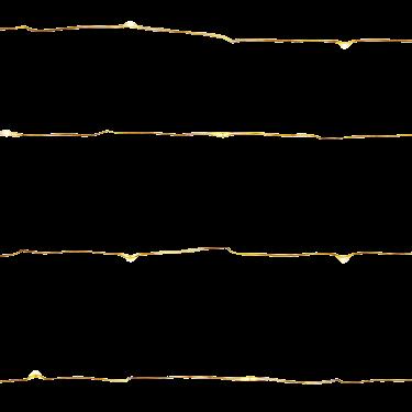 Guirnalda fina de 40 luces LED