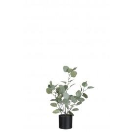 Planta artificial eucalipto.