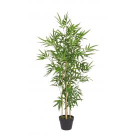 Planta bambú H130cm.