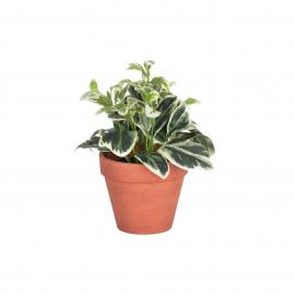 Planta artificial Aucuba con maceta marrón 22 cm
